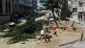 Vigoplan   Desplome De Dos árboles En Vigo