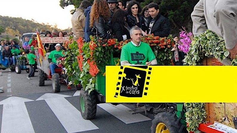 Vigoplan | Festival De Cans 2020 Festival De Cine En Galicia