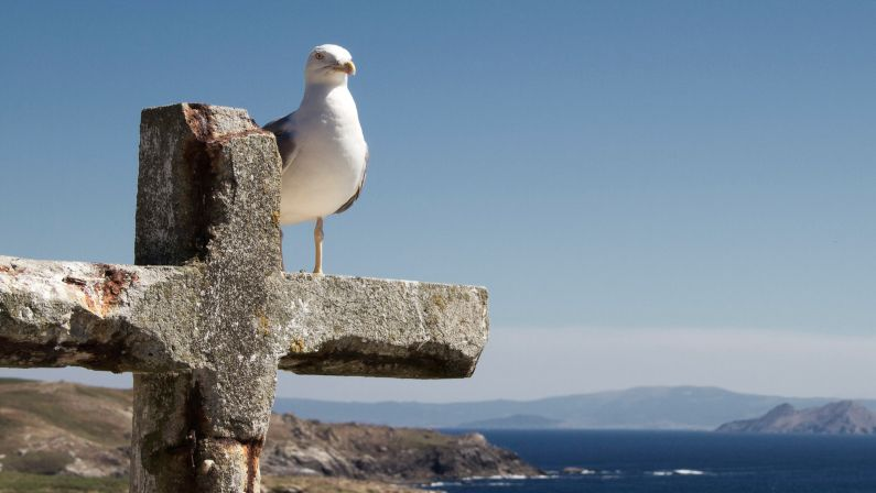Playas Vírgenes de Galicia | Paraísos de Galicia