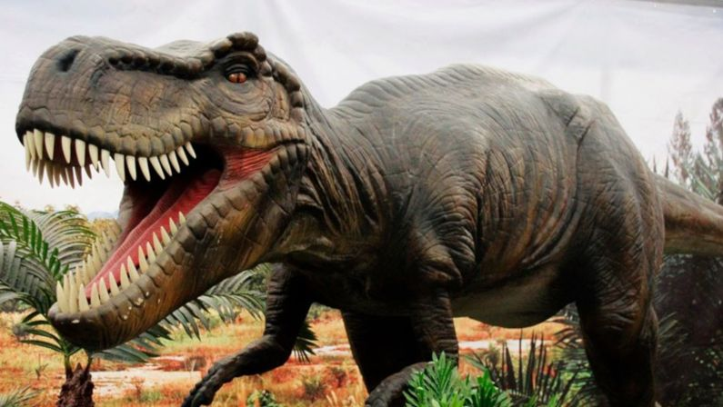 Dinosaurs Live The Exhibition en A Guardia