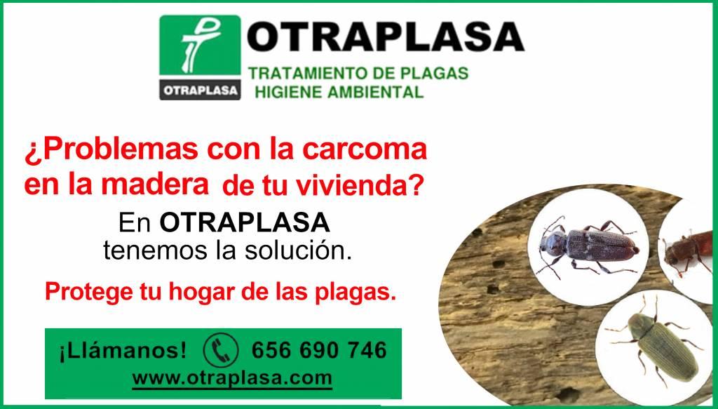 Vigoplan | Otraplasacarcoma