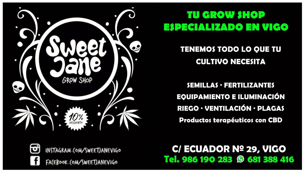 Vigoplan | Sweet Jane