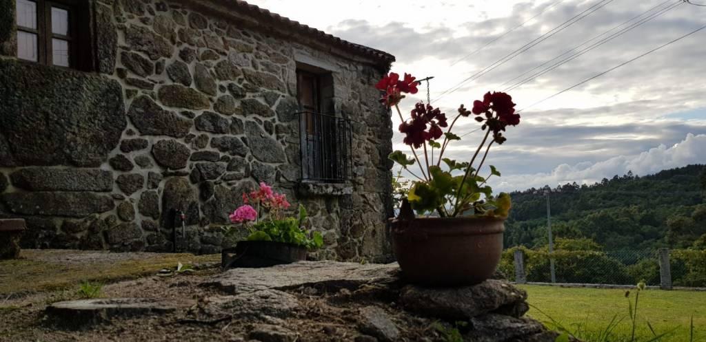 Vigoplan | A Porteliña Covelo