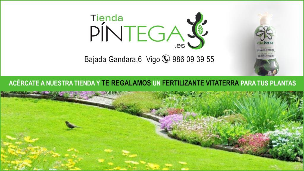 Vigoplan | Pintega Xardins | Todo Para El Cuidado Del Jardín
