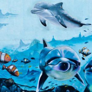 Vigoplan | Día Dos Oceanos Soutomaior Compressed