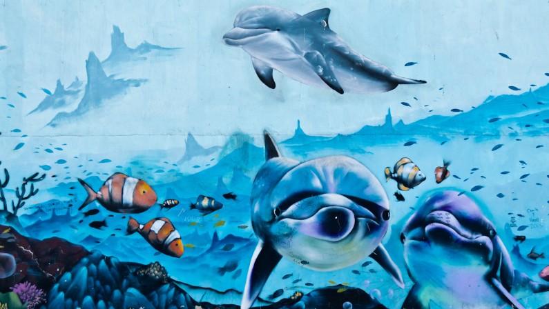 Lee más sobre el artículo Actividades Infantiles | Día de los Océanos en Arcade