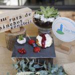 Vigoplan | Cafetería D´antonio 2